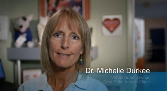 West Palm Animal Clinic Earns Esteemed 2014 Angie's List Super Service Award