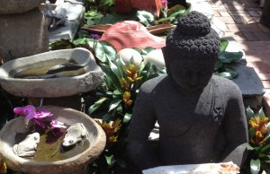 Budda garden at Floral Emporium.Photo by Sandra Schulman