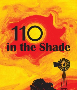 110-shade-inconcert-at-Palm-Beach-Dramaworks
