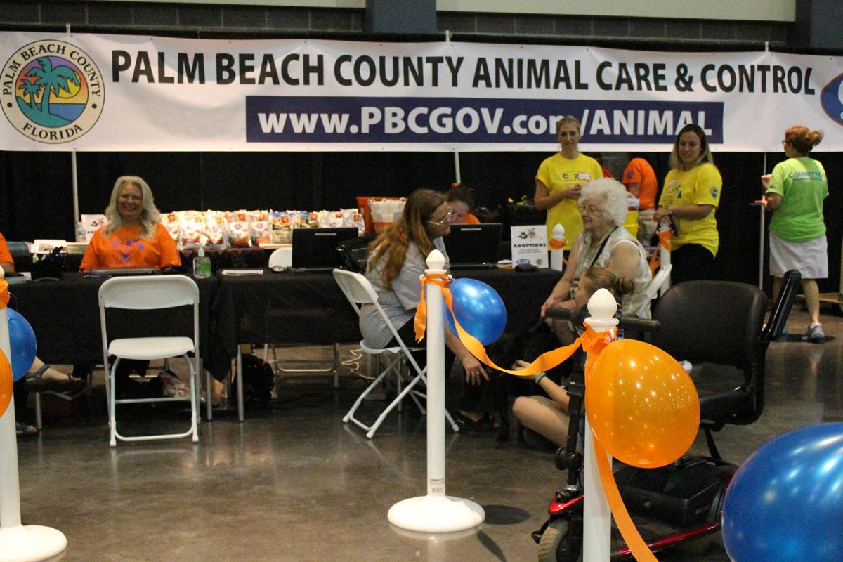 Adopt A Dog Palm Beach County Fl