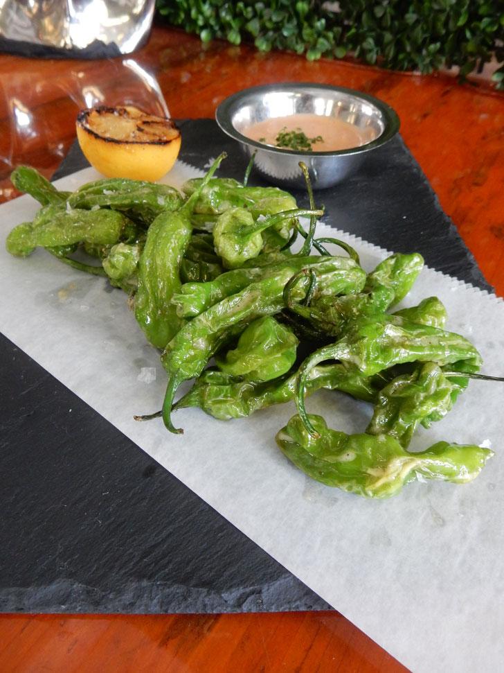 Shishito Peppers at Avocado Grill