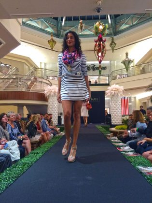 Palm Beach Food and Wine Festival Show