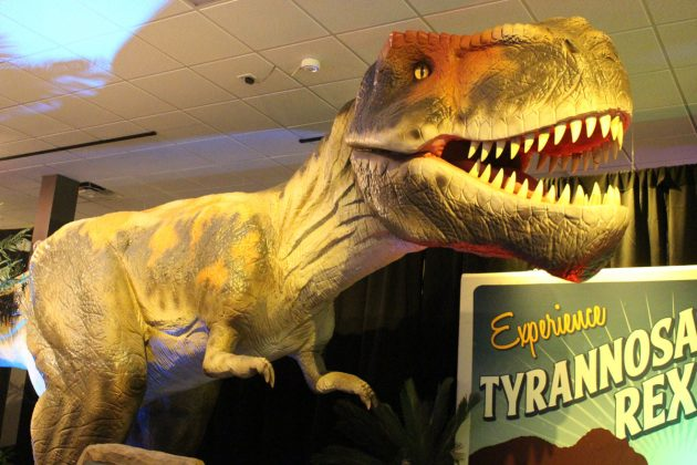 Dinosaurs-Around-the-World-Exhibit-in-West-Palm-Beach-1