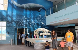 Manatee Lagoon Center
