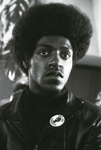 Photographing the Black Panthers