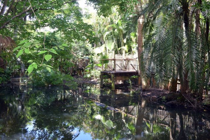 Alligator Alley at PB Zoo