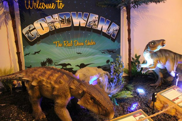 Dinosaurs-Around-the-World-Exhibit-in-West-Palm-Beach-1