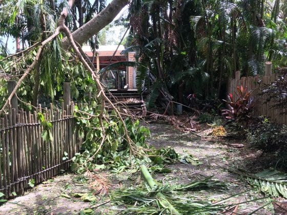 Hurricane Irma Recovery efforts at Palm Beach Zoo