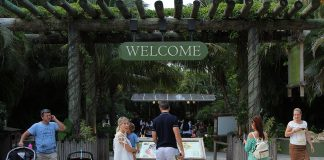 Roar & Pour event at Palm Beach Zoo