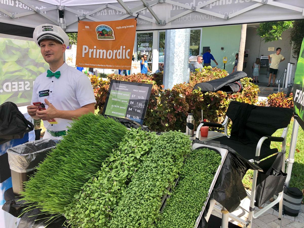 Sweet Greens Farmers Market Palm Beach Gardens Garden Ftempo