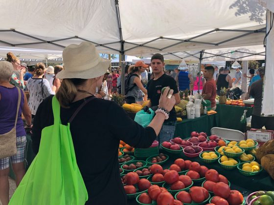 What's New this Season at West Palm Beach Green Market