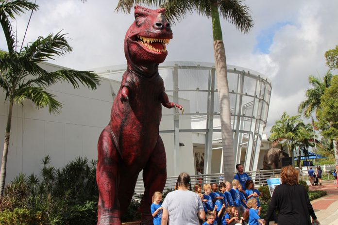 Giant T-Rex Gets Permanent Exhibit at South Florida Science Center