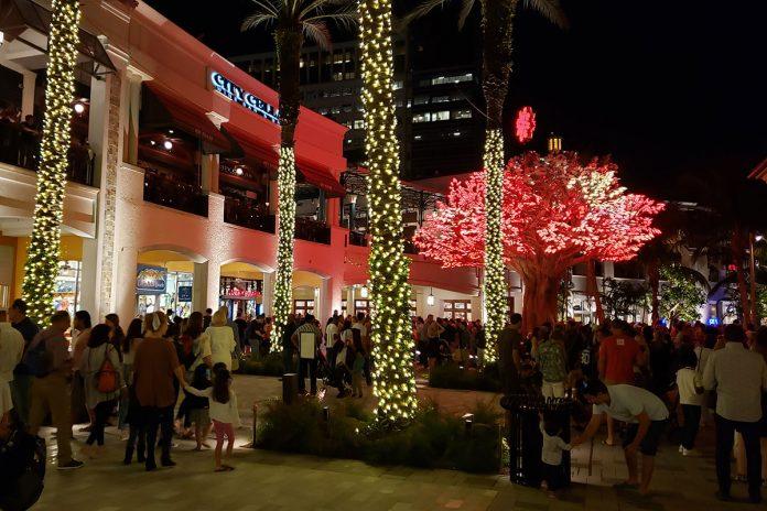 A Wishing Tree Lights the Holiday Season on Rosemary Square
