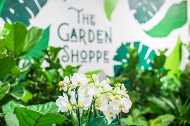 Garden Shoppe: Paint a Vision, Plant a Dream Garden